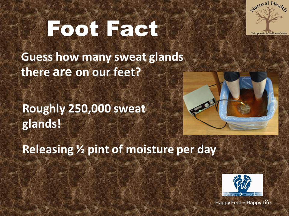 Foot Fact Guess how many sweat glands there are on our feet
