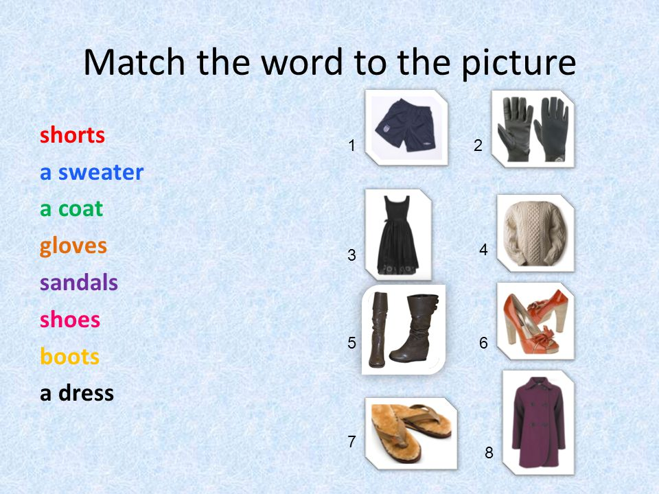 Match the word to the picture