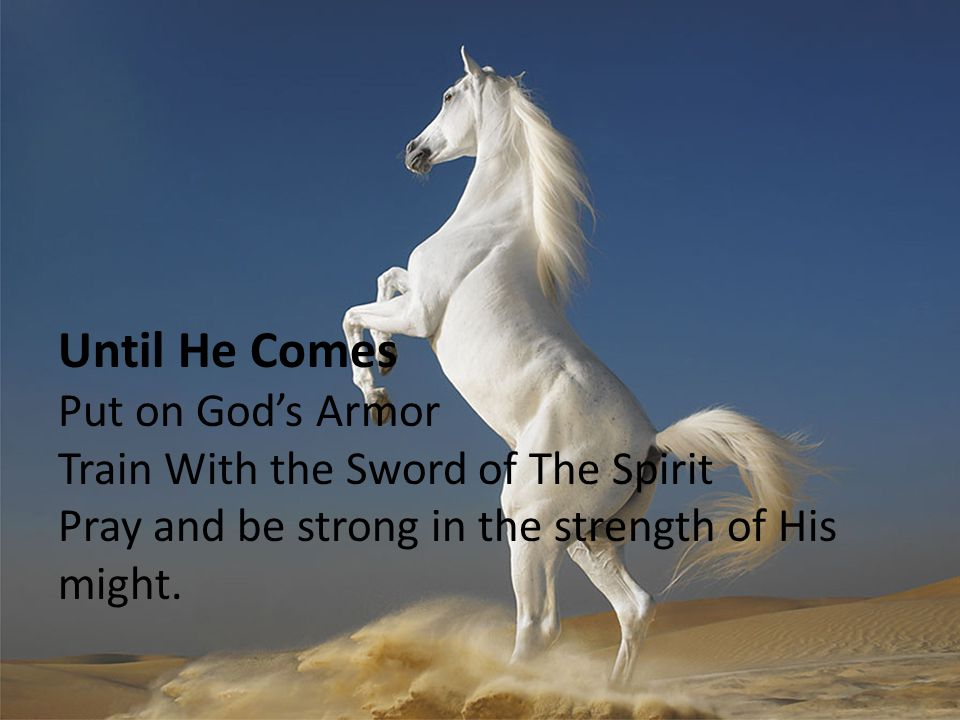 Until He Comes Put on God's Armor Train With the Sword of The Spirit
