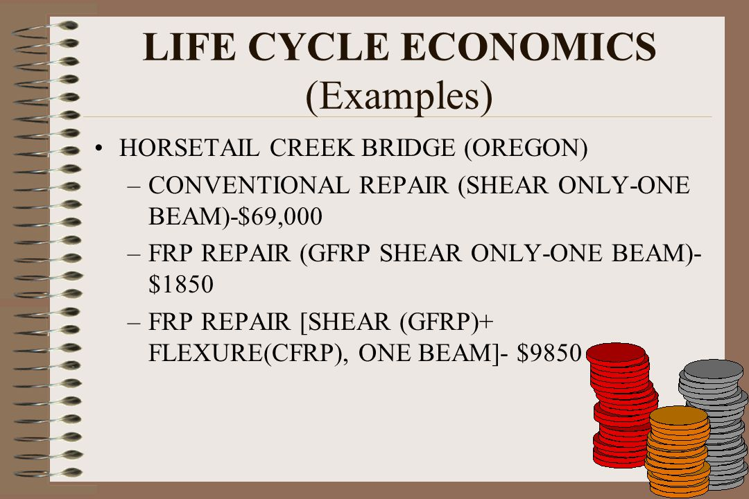 LIFE CYCLE ECONOMICS (Examples)