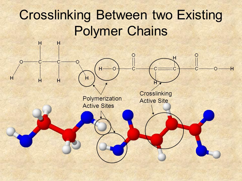 Crosslinking Between two Existing Polymer Chains