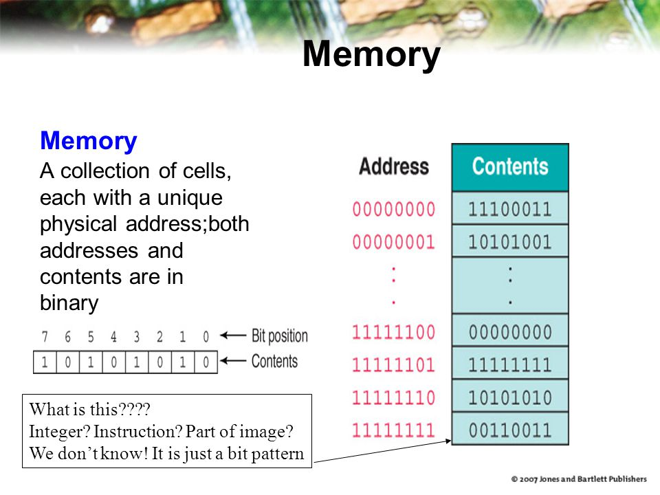 Memory Memory A collection of cells, each with a unique
