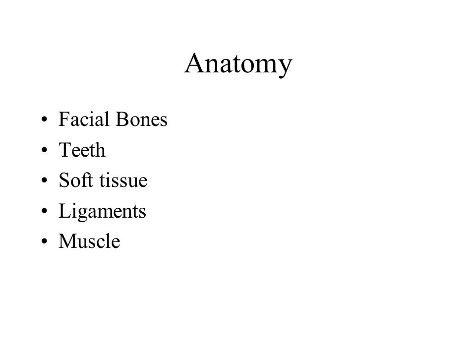 Anatomy Facial Bones Teeth Soft tissue Ligaments Muscle