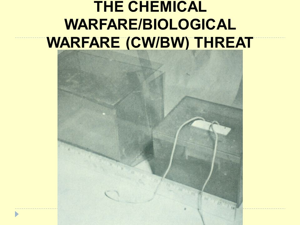 THE CHEMICAL WARFARE/BIOLOGICAL WARFARE (CW/BW) THREAT