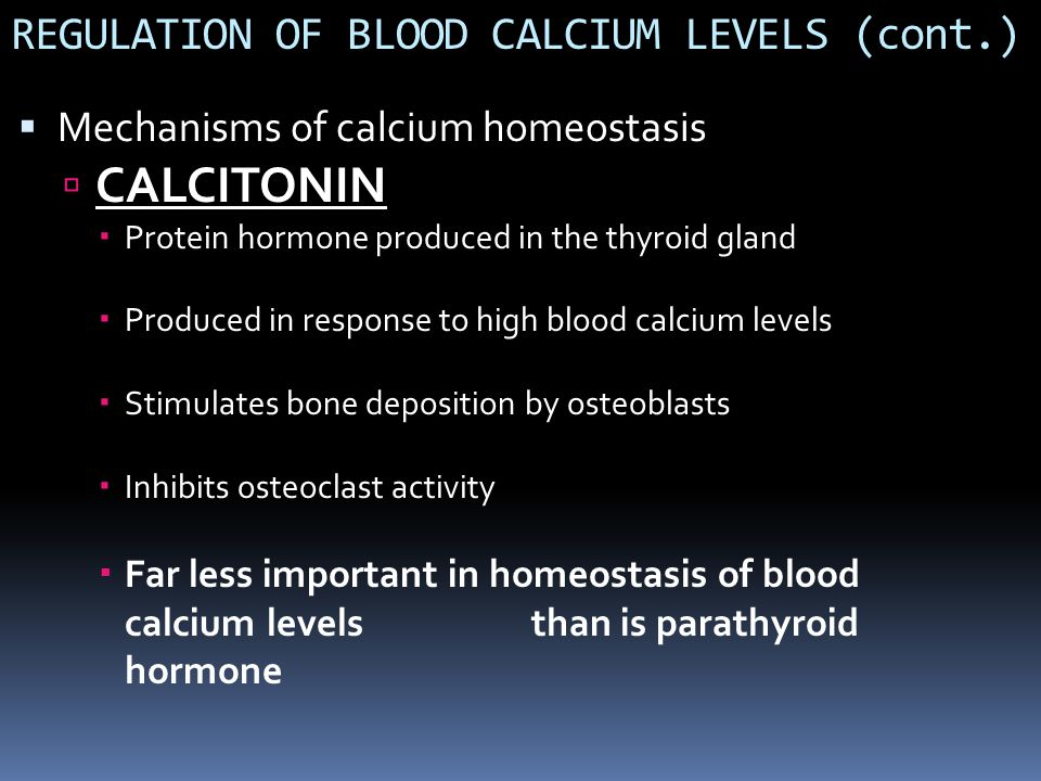 REGULATION OF BLOOD CALCIUM LEVELS (cont.)