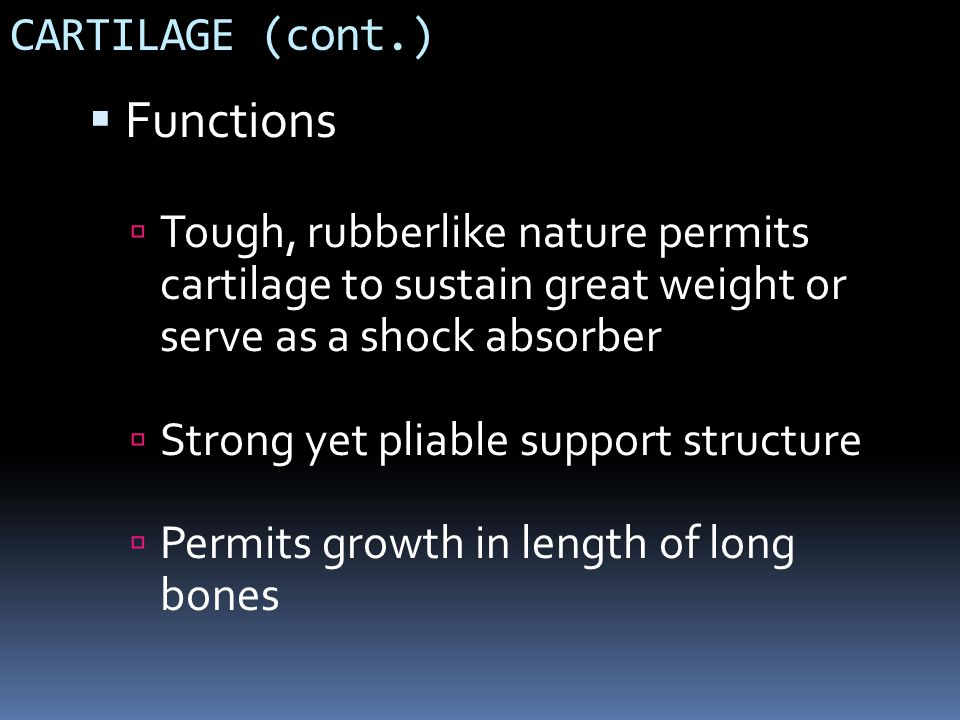 Functions CARTILAGE (cont.)