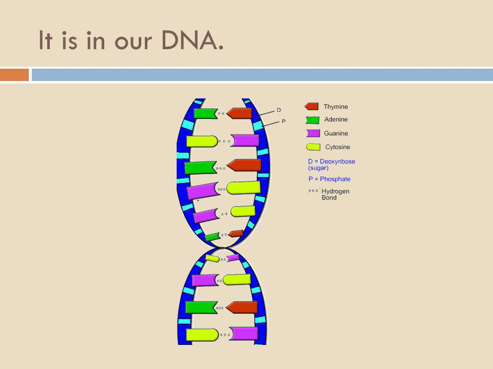 It is in our DNA.