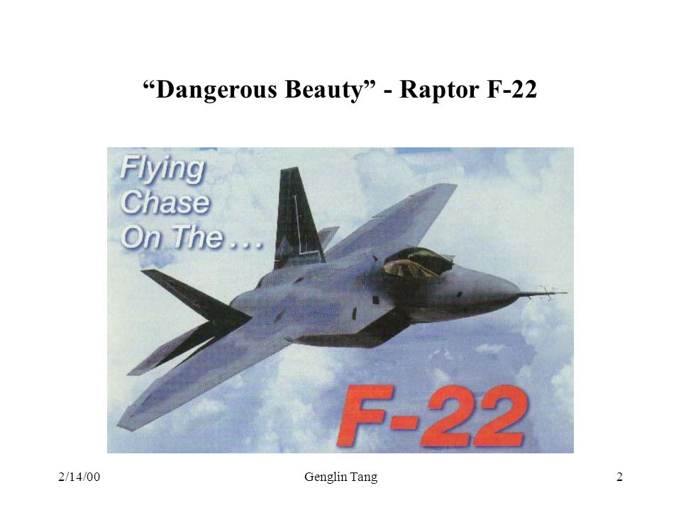 Dangerous Beauty - Raptor F-22