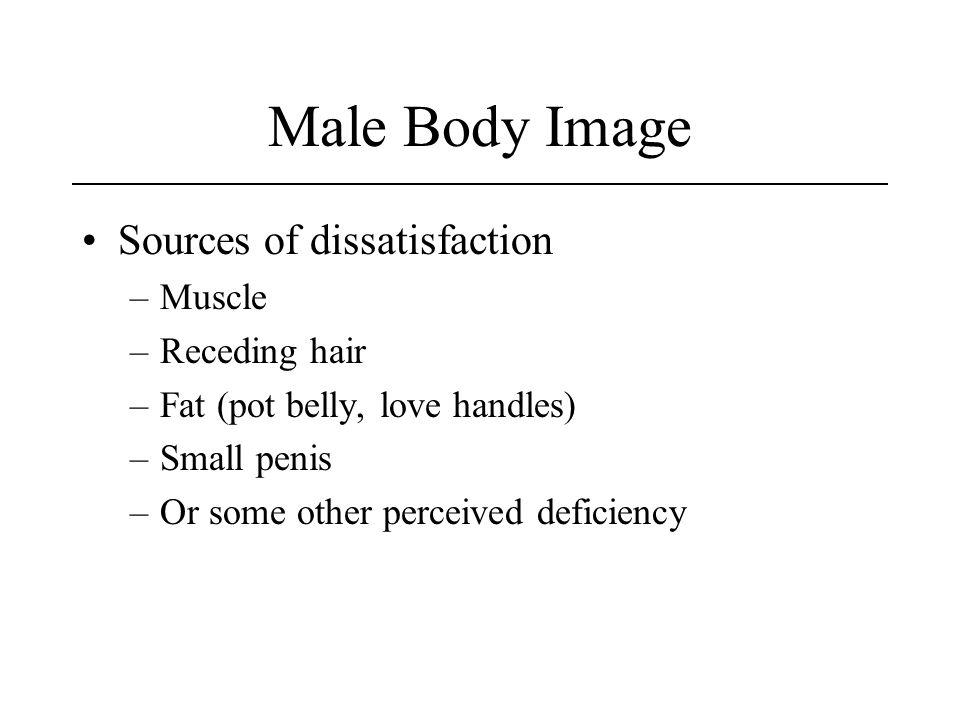 Male Body Image Sources of dissatisfaction Muscle Receding hair
