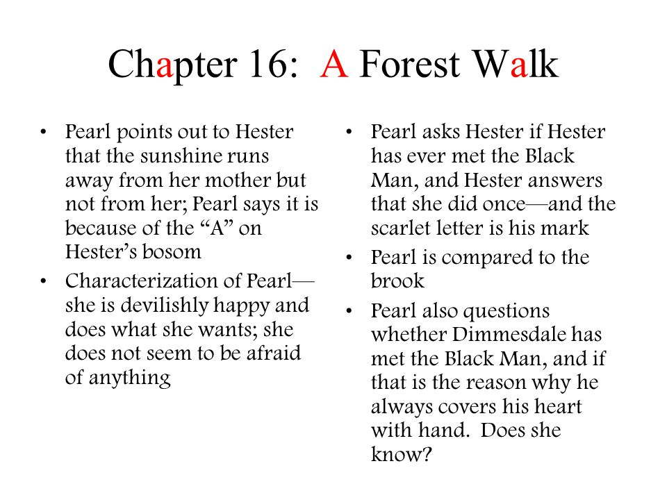 Chapter 16: A Forest Walk