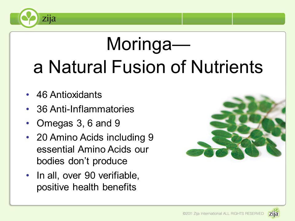 Moringa— a Natural Fusion of Nutrients