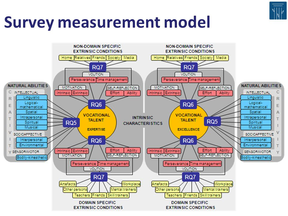Survey measurement model