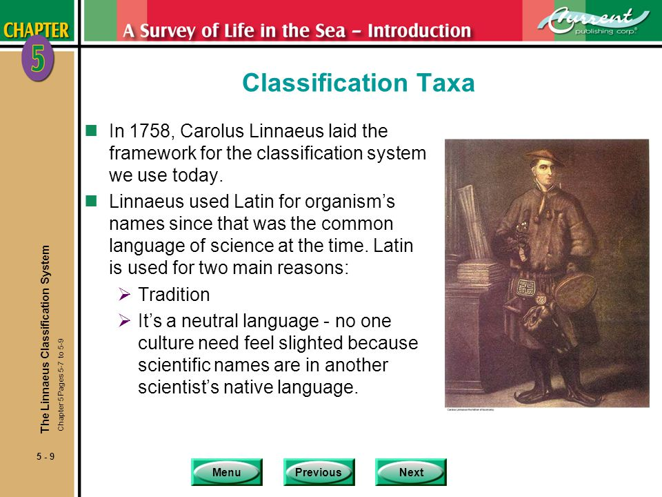 Classification Taxa In 1758, Carolus Linnaeus laid the framework for the classification system we use today.