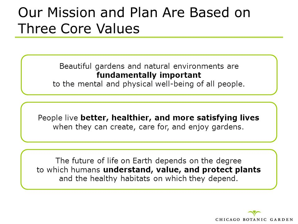 Our Mission and Plan Are Based on Three Core Values