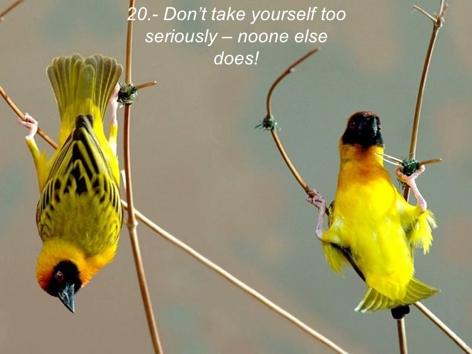 20.- Don't take yourself too seriously – noone else does!