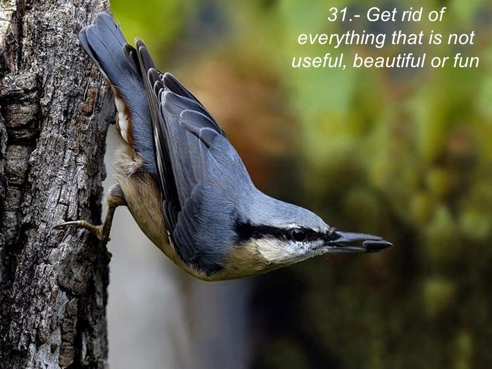 31.- Get rid of everything that is not useful, beautiful or fun