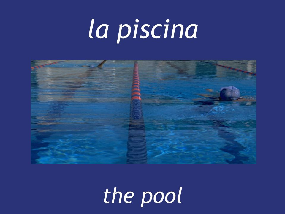 la piscina the pool
