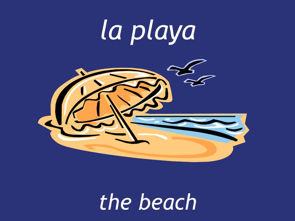 la playa the beach
