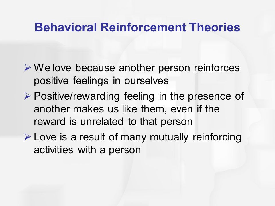 Behavioral Reinforcement Theories