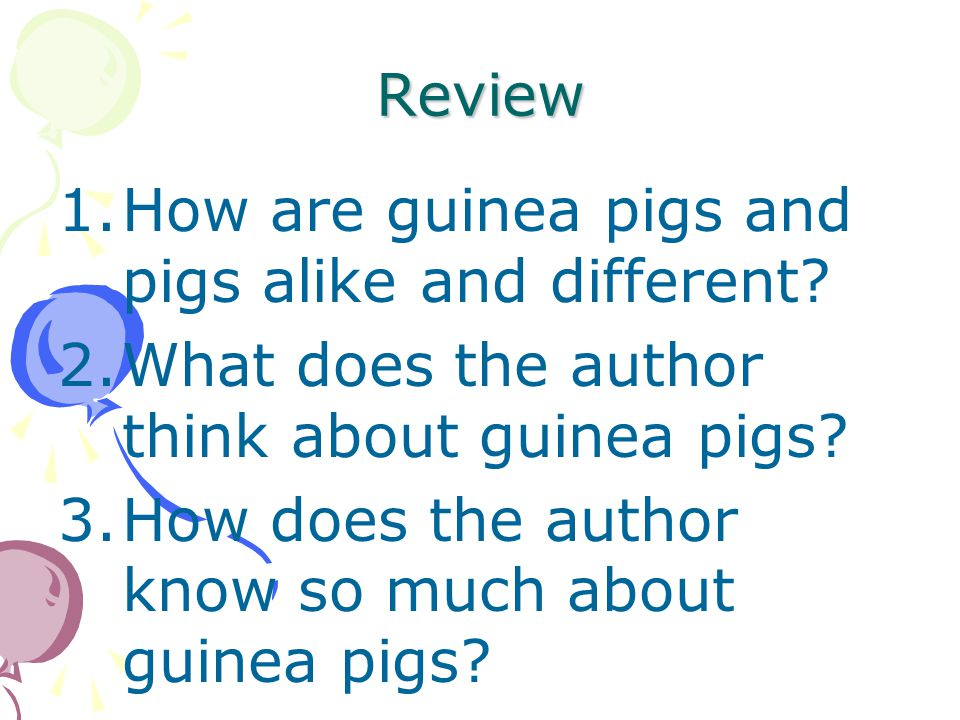 Review How are guinea pigs and pigs alike and different What does the author think about guinea pigs