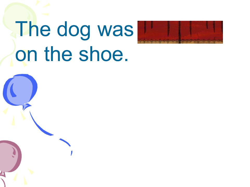 The dog was gnawing on the shoe.