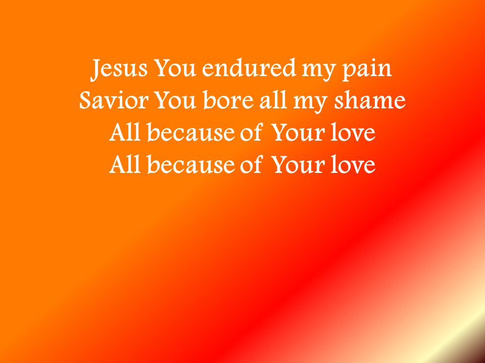Jesus You endured my pain