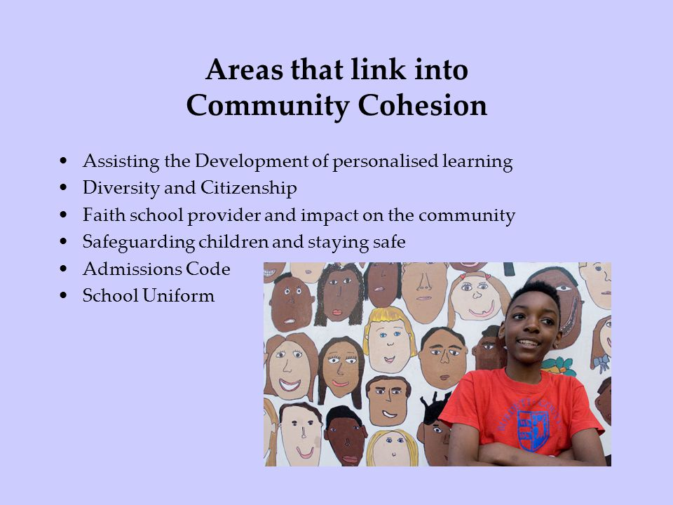 Areas that link into Community Cohesion