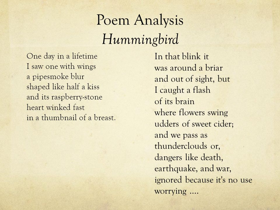 Poem Analysis Hummingbird