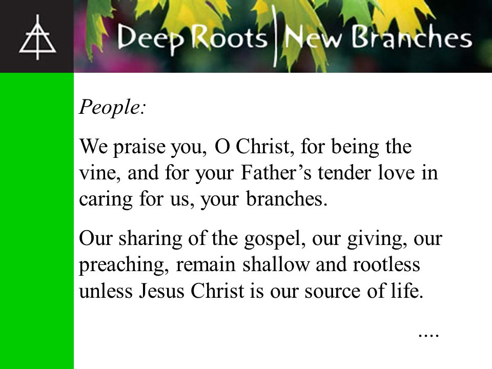 People: We praise you, O Christ, for being the vine, and for your Father's tender love in caring for us, your branches.