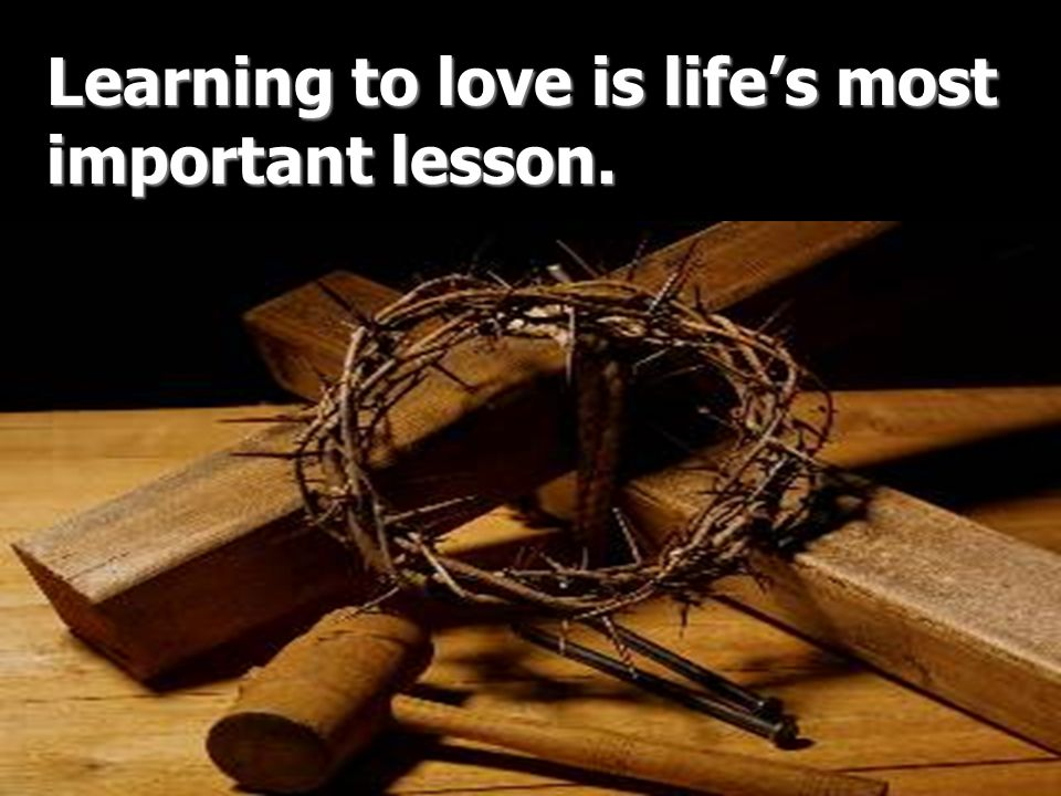 Learning to love is life's most