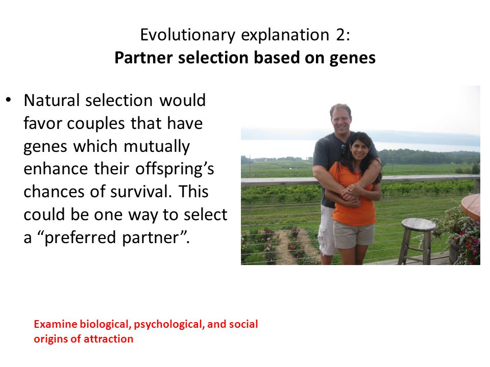 Evolutionary explanation 2: Partner selection based on genes