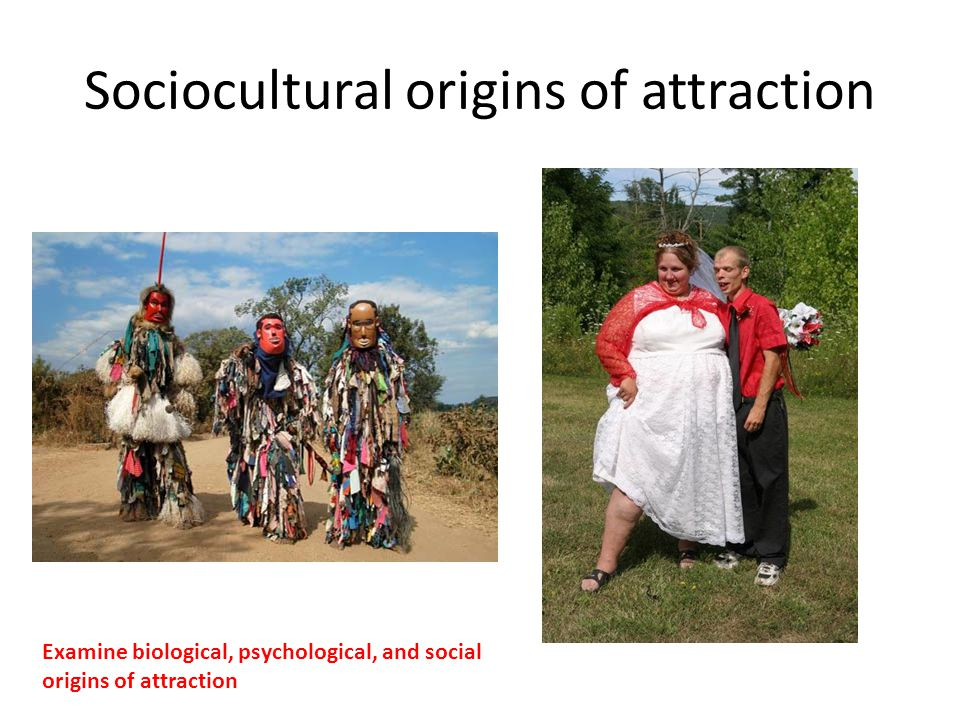 Sociocultural origins of attraction