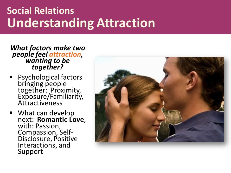 What factors make two people feel attraction, wanting to be together