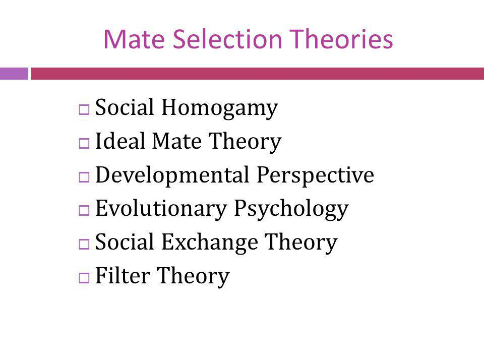 Mate Selection Theories