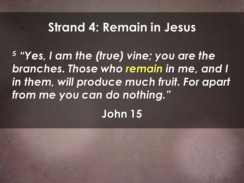 Strand 4: Remain in Jesus