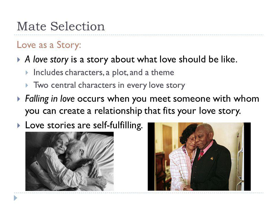 Mate Selection Love as a Story: