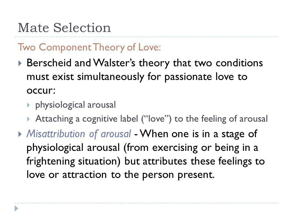 Mate Selection Two Component Theory of Love: