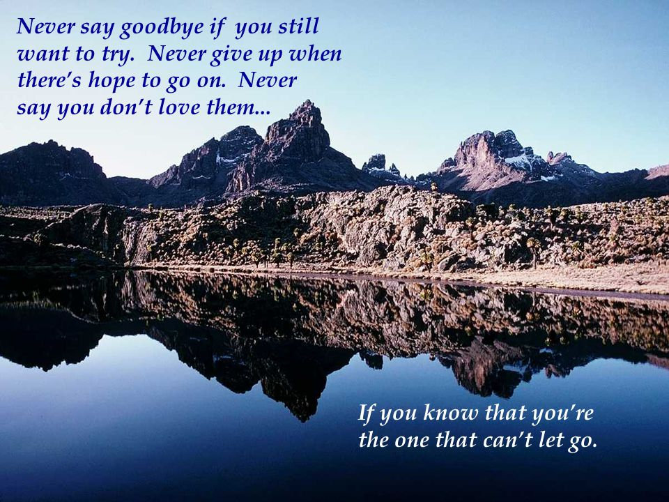 Never say goodbye if you still