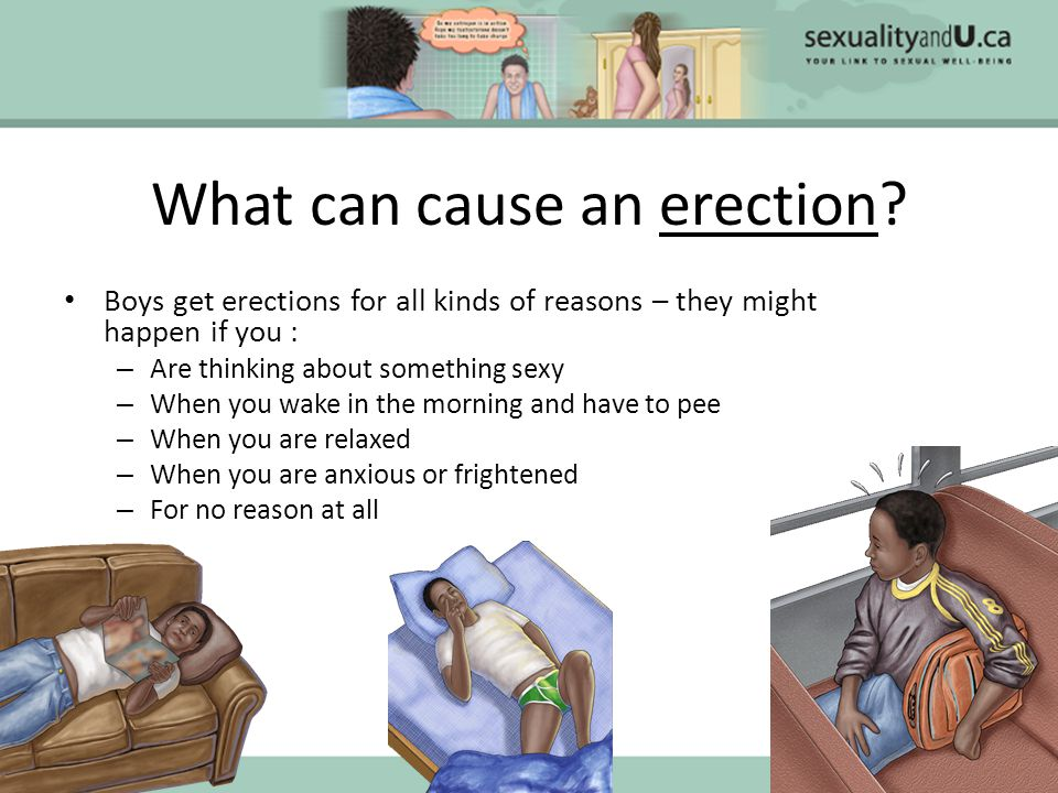 why do boys get erections