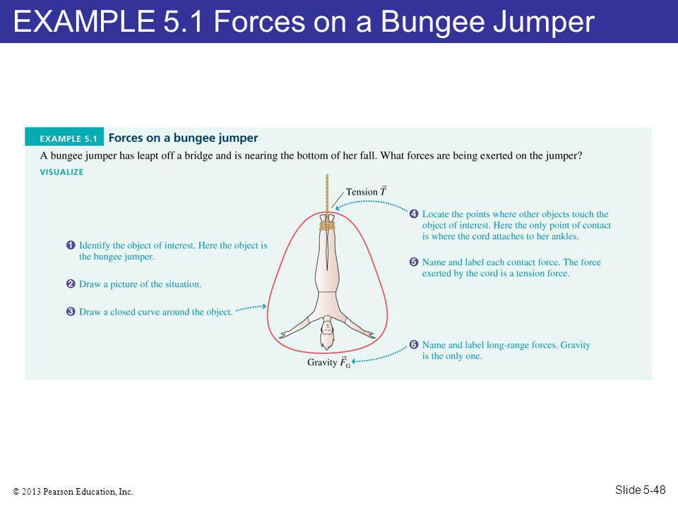 EXAMPLE 5.1 Forces on a Bungee Jumper