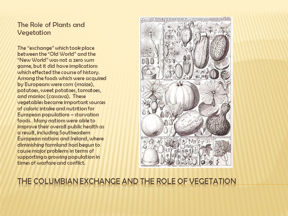 The Columbian Exchange and the role of vegetation
