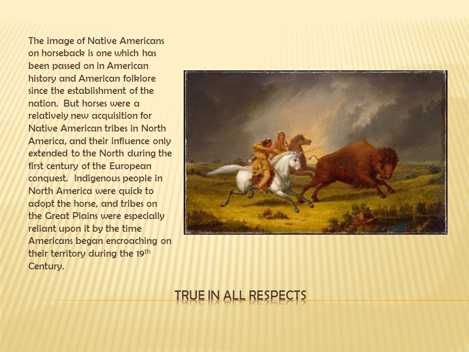 The image of Native Americans on horseback is one which has been passed on in American history and American folklore since the establishment of the nation. But horses were a relatively new acquisition for Native American tribes in North America, and their influence only extended to the North during the first century of the European conquest. Indigenous people in North America were quick to adopt the horse, and tribes on the Great Plains were especially reliant upon it by the time Americans began encroaching on their territory during the 19th Century.