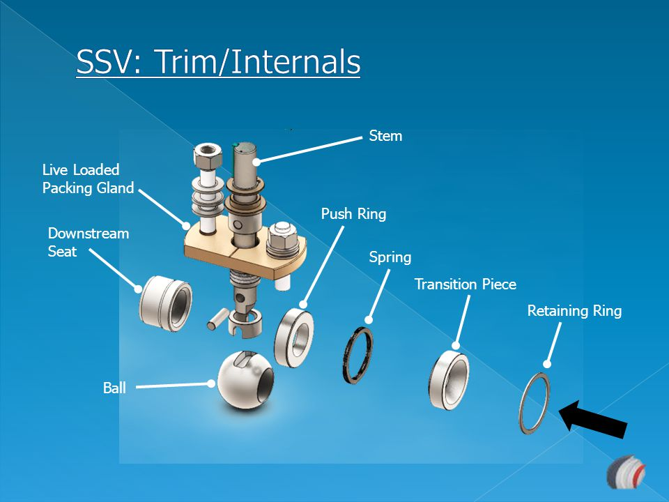 SSV: Trim/Internals Stem Live Loaded Packing Gland Push Ring