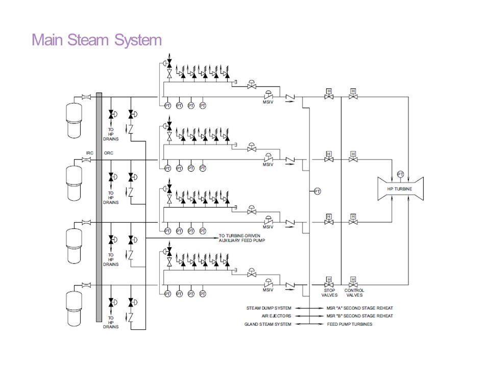 Main Steam System