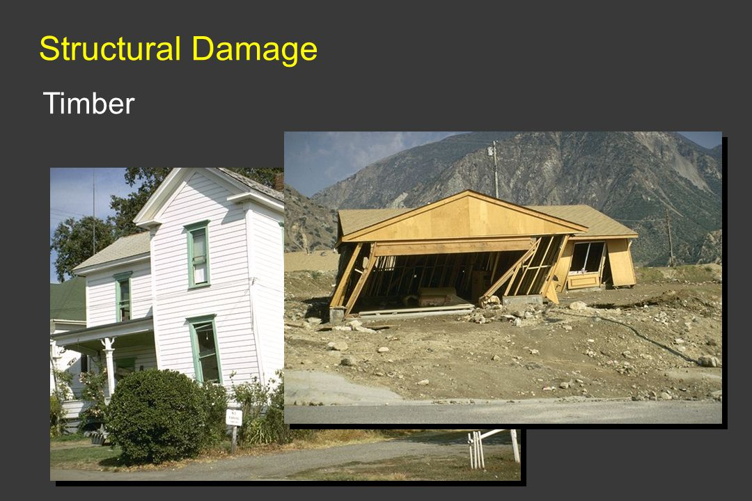Structural Damage Timber