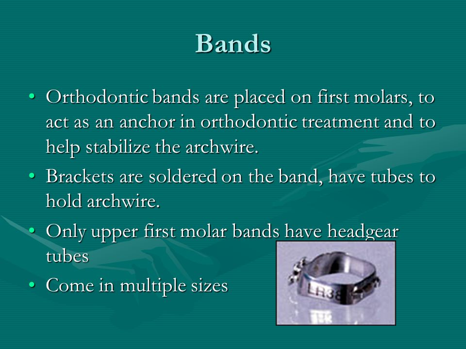Bands Orthodontic bands are placed on first molars, to act as an anchor in orthodontic treatment and to help stabilize the archwire.