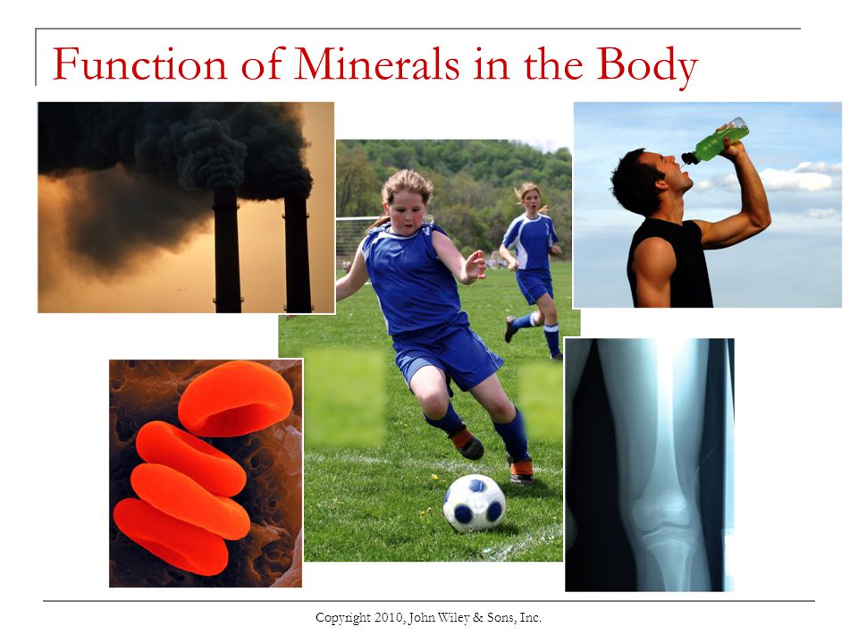 Function of Minerals in the Body