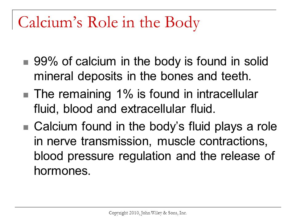 Calcium's Role in the Body