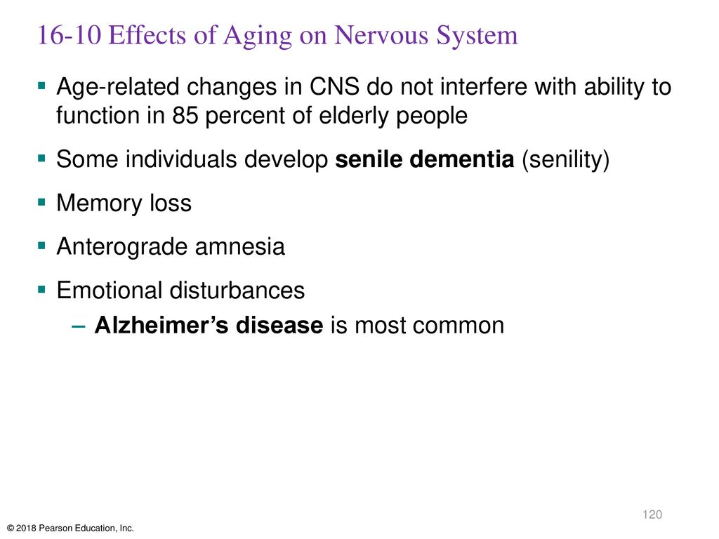 16-10 Effects of Aging on Nervous System