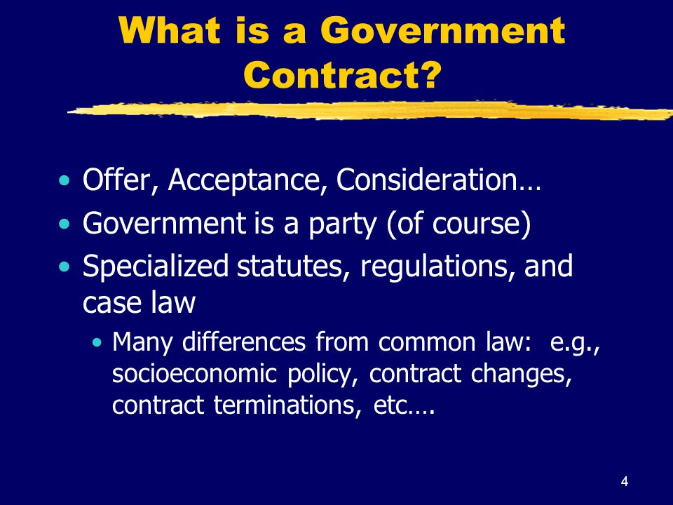 What is a Government Contract